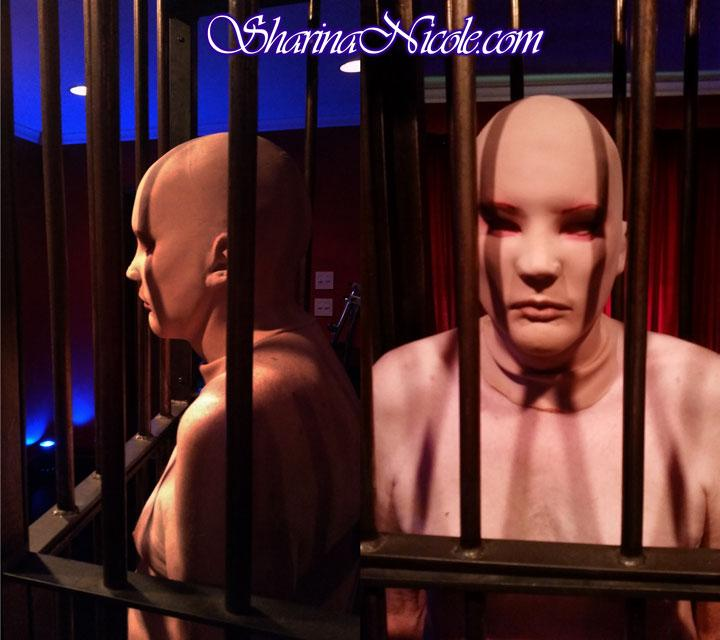 BDSM Solitary Confinement and Caging