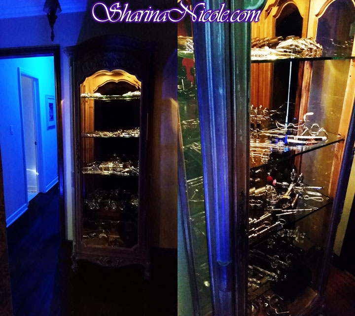 Minneapolis-Dominatrix-Sharina-Nicole-domination-studio-cabinet