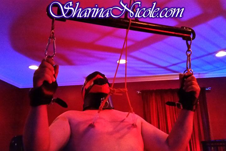 bdsm dominatrix studio in Minneapolis, MN with suspension system & bar
