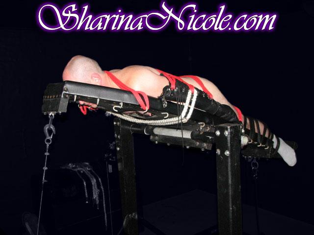 Sharina Nicole's panic room inversion table
