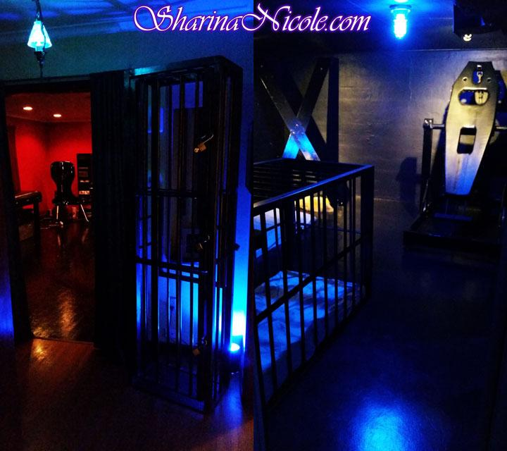 dominatrix mistress Sharina Nicole Minneapolis bdsm studio standup cage & panic room