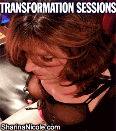 Forced Crossdressing Transformation Sessions in Minneapolis, Minnesota