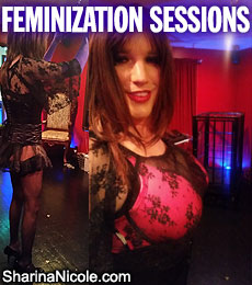 Minneapolis, Minnesota Crossdressing & Feminization Sessions